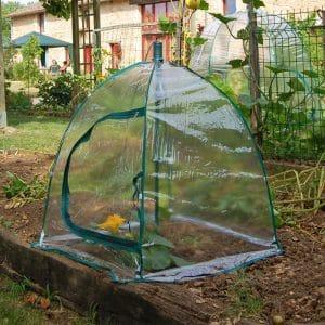 petite-serre-jardin-parapluie